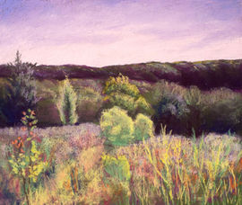 Evening on the Escarpment - Ann Oakley