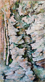 Expose- The Lichen Road Map- SOLD